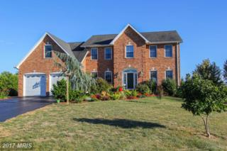 13601 Daisy Circle, Hagerstown, MD 21740 (#WA9910056) :: Pearson Smith Realty