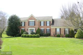 19304 Heritage Lane, Hagerstown, MD 21742 (#WA9911380) :: Pearson Smith Realty