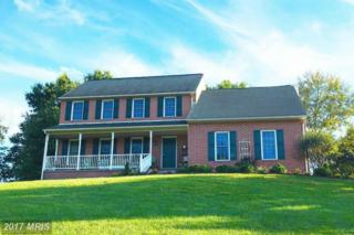 20029 Toms Road, Boonsboro, MD 21713 (#WA9911975) :: Pearson Smith Realty