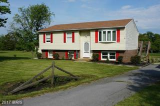 14829 Mercersburg Road, Clear Spring, MD 21722 (#WA9913776) :: Pearson Smith Realty