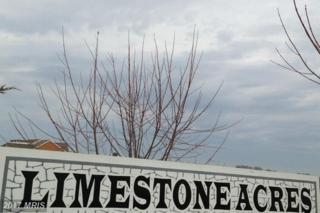 22132 Whitestone Court, Smithsburg, MD 21783 (#WA9915774) :: Pearson Smith Realty