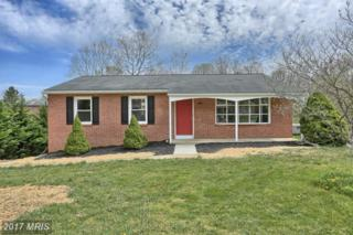 42 Stanford Road, Hagerstown, MD 21742 (#WA9917771) :: Pearson Smith Realty
