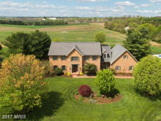22342 Durberry Road, Smithsburg, MD 21783 (#WA9924783) :: Pearson Smith Realty