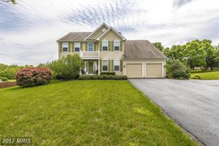 6 Bunny Lane, Keedysville, MD 21756 (#WA9937880) :: Pearson Smith Realty