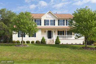 19228 Chippendale Circle, Hagerstown, MD 21742 (#WA9938580) :: Pearson Smith Realty