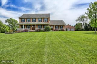 16147 River Bend Court, Williamsport, MD 21795 (#WA9939725) :: Pearson Smith Realty