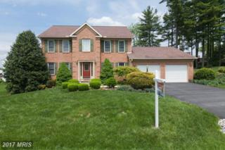 16802 Bowen Court, Williamsport, MD 21795 (#WA9940849) :: Pearson Smith Realty
