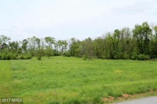 8317 Prophet Acres Road, Fairplay, MD 21733 (#WA9948221) :: Pearson Smith Realty