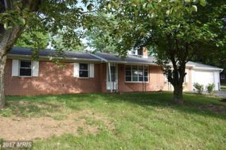 13814 Weber Way, Hagerstown, MD 21742 (#WA9948600) :: Pearson Smith Realty