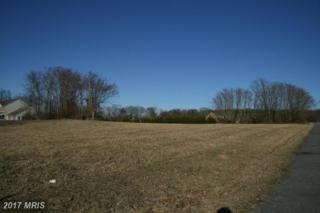 7809 Dam 4 Road, Williamsport, MD 21795 (#WA9952716) :: Pearson Smith Realty