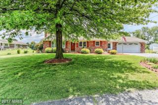 10405 Mikie Drive, Williamsport, MD 21795 (#WA9955151) :: Pearson Smith Realty