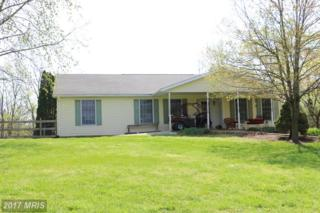 13703 Rockdale Road, Clear Spring, MD 21722 (#WA9956302) :: Pearson Smith Realty
