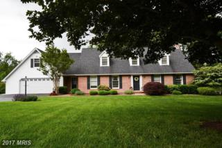 21723 O Toole Drive, Hagerstown, MD 21742 (#WA9960096) :: Pearson Smith Realty