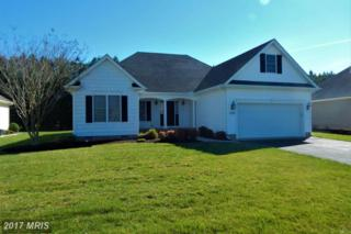 5987 Fire Fly Drive, Salisbury, MD 21801 (#WC9912164) :: Pearson Smith Realty