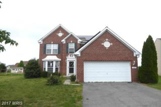 124 Paddock Drive, Fruitland, MD 21826 (#WC9950004) :: Pearson Smith Realty