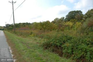 Prospect Hill Road, Montross, VA 22520 (#WE8479160) :: LoCoMusings