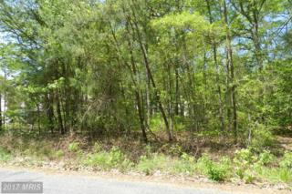 Not On File, Colonial Beach, VA 22443 (#WE9922288) :: Pearson Smith Realty