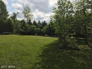 Monument Drive, Montross, VA 22520 (#WE9931745) :: Pearson Smith Realty