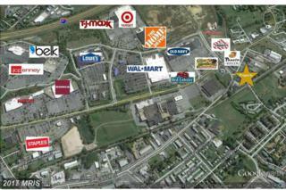 2609 Papermill Road, Winchester, VA 22601 (#WI9849778) :: Pearson Smith Realty