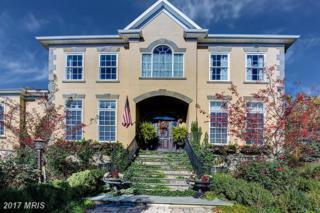 1030 Heth Place, Winchester, VA 22601 (#WI9861013) :: Pearson Smith Realty