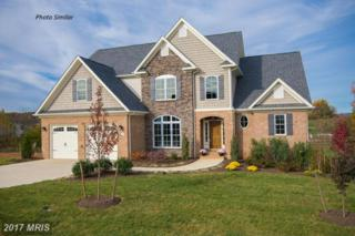 Seldon Drive Lot 18, Winchester, VA 22601 (#WI9861975) :: Pearson Smith Realty