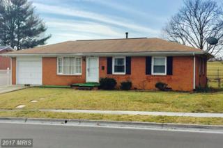 929 Allen Drive, Winchester, VA 22601 (#WI9867003) :: Pearson Smith Realty