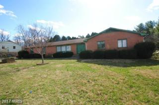 1317 Caroline Street, Winchester, VA 22601 (#WI9876407) :: Pearson Smith Realty