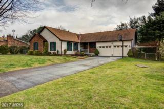 2800 Saratoga Drive, Winchester, VA 22601 (#WI9898748) :: LoCoMusings