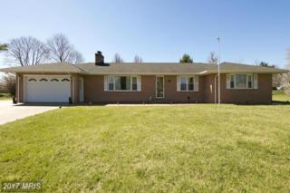409 Superior Avenue, Winchester, VA 22601 (#WI9899296) :: Pearson Smith Realty