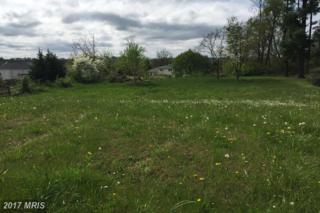 2721 Blue Ridge Terrace, Winchester, VA 22601 (#WI9924993) :: Pearson Smith Realty