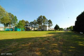 176 Jefferson Avenue, Ocean City, MD 21842 (#WO9960349) :: Arlington Realty, Inc.