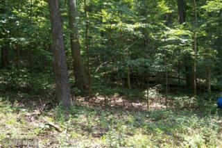 0 Lot 729 Old Sawmill Road, Front Royal, VA 22630 (#WR8677136) :: Pearson Smith Realty