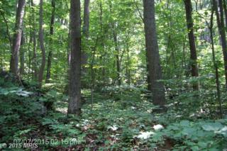 0 Lot 728 Old Sawmill Road, Front Royal, VA 22630 (#WR8677138) :: Pearson Smith Realty