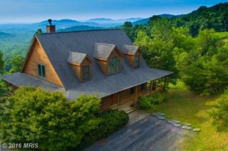 4615 Remount Road, Front Royal, VA 22630 (#WR9726923) :: Pearson Smith Realty