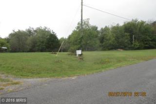 Indian Hollow Road, Bentonville, VA 22610 (#WR9774819) :: Pearson Smith Realty
