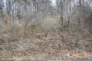 Lot 33 Golden Russet Drive, Linden, VA 22642 (#WR9813943) :: Pearson Smith Realty