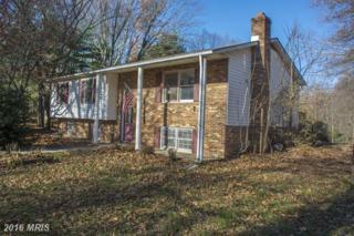 40 Blackbear Court, Bentonville, VA 22610 (#WR9819448) :: Pearson Smith Realty
