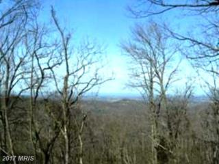 267 Briar And Lot 430 Lane, Front Royal, VA 22630 (#WR9851925) :: Pearson Smith Realty