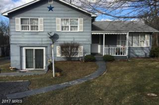 158 Farm View Road, Front Royal, VA 22630 (#WR9852662) :: LoCoMusings