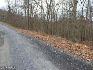0 Lot 63 Brandy Road, Front Royal, VA 22630 (#WR9855976) :: Pearson Smith Realty
