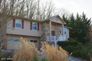 123 Gloucester Road, Front Royal, VA 22630 (#WR9864997) :: Pearson Smith Realty