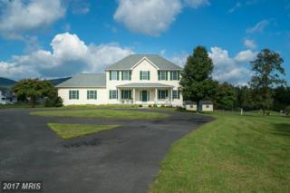 56 Hunters Ridge Drive, Front Royal, VA 22630 (#WR9866264) :: LoCoMusings
