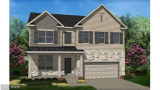 37 Caddie Court, Front Royal, VA 22630 (#WR9868965) :: Pearson Smith Realty