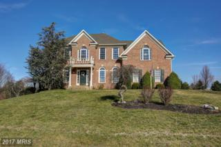 9 Jackson Place, Middletown, VA 22645 (#WR9870879) :: Pearson Smith Realty