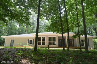 878 Rocky Lane, Front Royal, VA 22630 (#WR9871481) :: Pearson Smith Realty