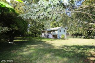 245 Avalon Drive, Front Royal, VA 22630 (#WR9879791) :: LoCoMusings