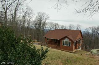 256 Alpine Drive, Front Royal, VA 22630 (#WR9882297) :: LoCoMusings