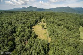 Hunt Road, Front Royal, VA 22630 (#WR9884295) :: Pearson Smith Realty