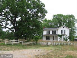 8897 Winchester Road, Front Royal, VA 22630 (#WR9885721) :: Pearson Smith Realty
