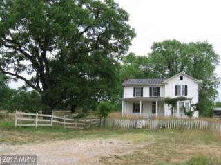 8897 Winchester Road, Front Royal, VA 22630 (#WR9885732) :: Pearson Smith Realty